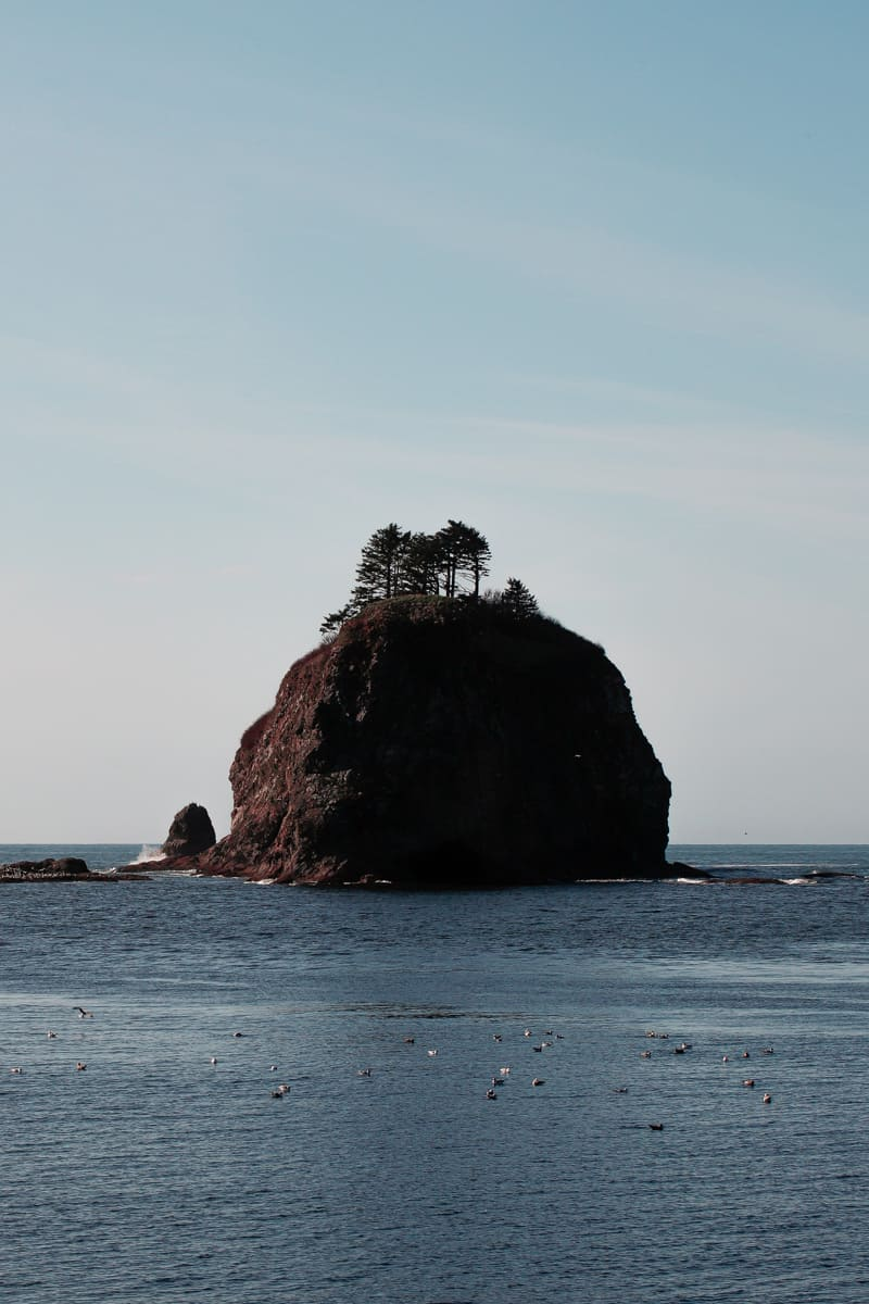A Haystack rock in La Push, Washington.